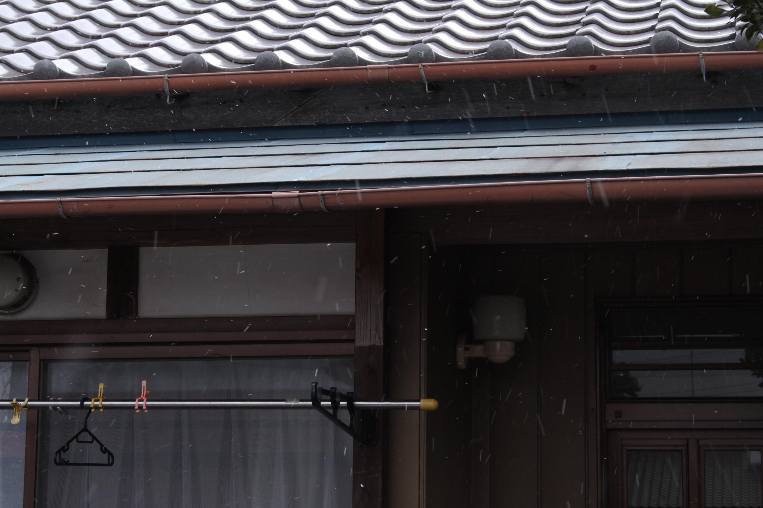 ほんの少しの時間だけ成田でも雪が降っていました!